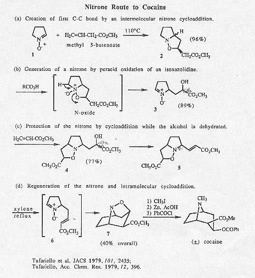 Ivermectin 1 dosage for humans