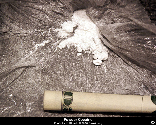 The Research Planet: Cocaine Photos From Erowid