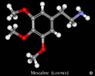 Erowid Mescaline Vault : Chemistry